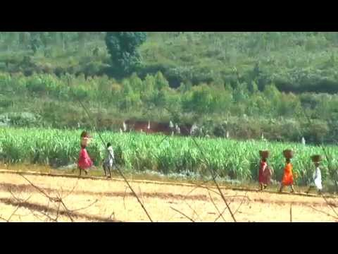 Indian Village Life.Fourth part:Orissa State-East India.Full HD