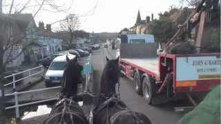 Driving an ill-matched pair of Friesians and why they are not suitable for commercial work.