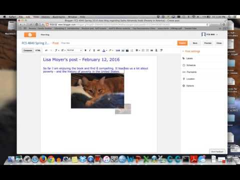 How to post on the book blog for class