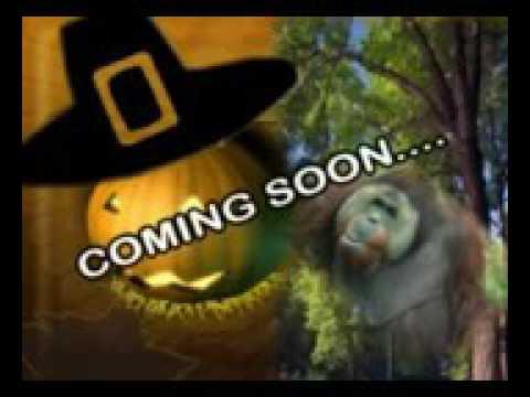 Dj Afro....coming soon