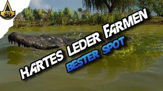 Assassins Creed Origins - Best farming Spot Hard Leather Animal LV 12 - AC Origins