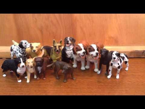 Stray Dog/ Wolf Names