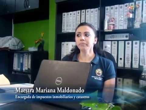 ÁREAS de nutrición (CAMPO LABORAL) → Lic. en Nutrición ← ǀ Jackye Guerrero ǀиз YouTube · Длительность: 14 мин27 с