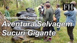 Sucuri Gigante (FULL HD) (DOCUMENTÁRIO COMPLETO)
