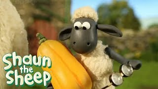 Shaun The Sheep Full Episodes | Shaun The Sheep 2017 Season 2 Episodes 1-10 | Shaun The Sheep HD