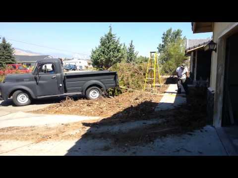 1952 Dodge truck for sale Carson city Nevada