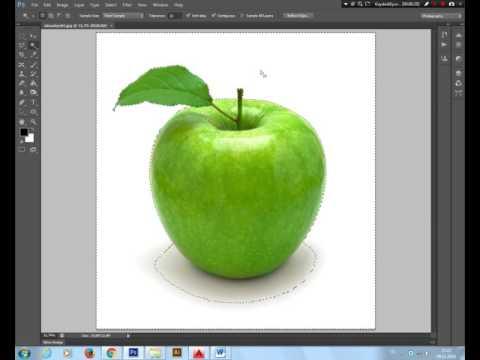 Bilgi Eğitim Grafik Tasarım Kursu