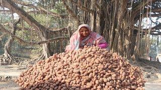 Farm Fresh POTATO CHIPS RECIPE Village Style Potato Wafers Homemade Potato Chips For Orphan Kids