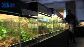 Wystawa zwierząt egzotycznych w Szczecinie
