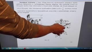 Задача номер 1038 (1022) по Математике 6 класс Виленкин