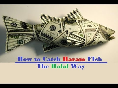 How to Catch Haram Fish the Halal Way