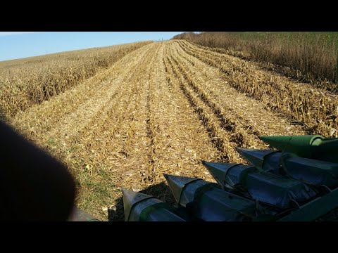 The First Day Of Corn Harvest 2017 Is In The Books