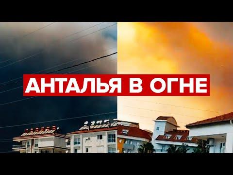 Лесные пожары в Турции приблизились к отелям и домам — видео