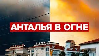 Фото Лесные пожары в Турции приблизились к отелям и домам — видео