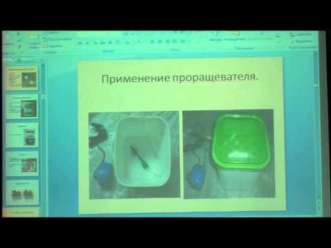 """Семинар на тему"""" Выращивание рассады"""" часть 1"""