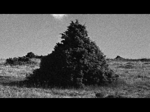 Eight Winds – Sokratis Sinopoulos Quartet