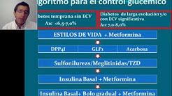 hqdefault - Revista De Diabetes Mellitus Pdf