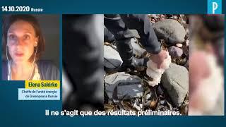 Catastrophe écologique en Russie : Greenpeace cherche encore le coupable