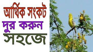 New bangla totka