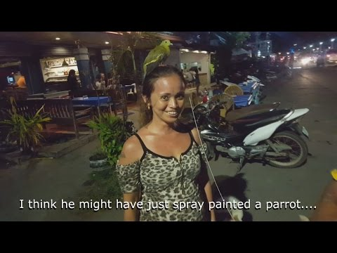 Expat Life in the Philippines Vignettes:  It's Always Something....