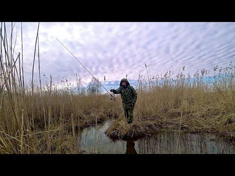 Эх, хвост, чешуя, не поймал я ничего. Рыбалка для души. Ответы на вопросы.