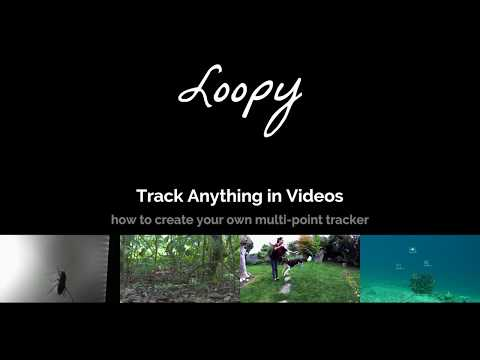 loopbio - loopy features