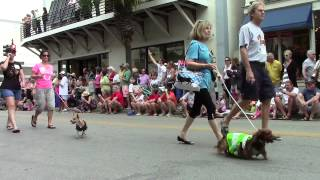 Dachshund Parade Key West 2014
