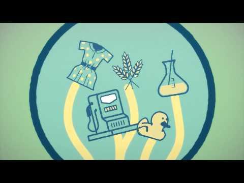 The Bioeconomy starts here!