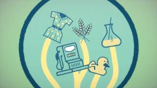 The Bioeconomy starts here! thumbnail