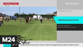 В Англии выбежавшая на поле альпака прервала футбольный матч Москва 24