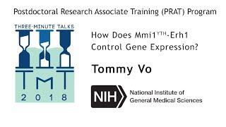 Dr. Tommy Vo, How Does Mmi1YTH Erh1 Control Gene Expression