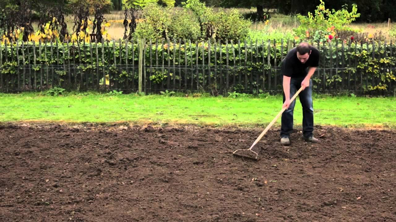 How To Sow A New Lawn Gro Sure You