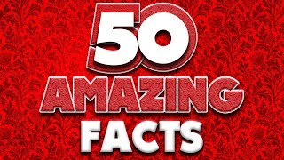 matthew santoro 50 amazing facts