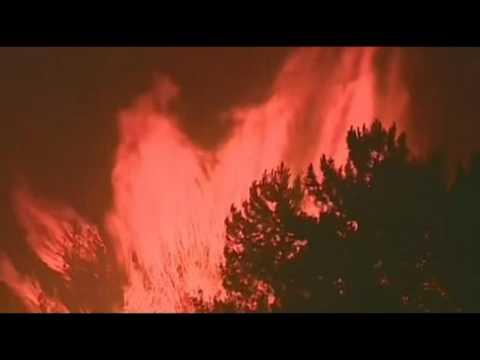 Portugal forest fires kill 43 near Coimbra-2017