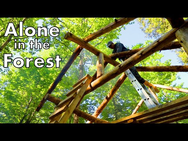 Timelapse Timber Frame by One Man in the Wilderness
