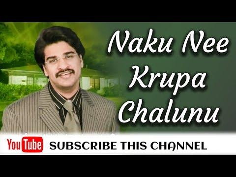 Naku Nee Krupa Chalunu Song - N Michael Paul