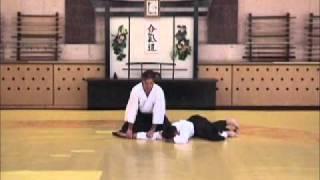 Базовая техника Айкидо 6 кю (Basic techniques of Aikido 6 kyu)