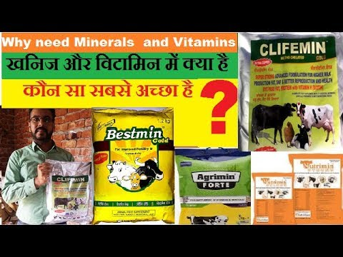 Why need minerals and vitamins | Which mineral mixture is best