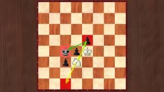 Правила шахмат. Занятие 7. Относительная ценность фигур и пешек.