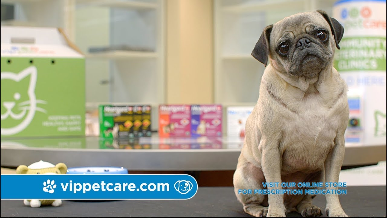 VIP Petcare - Look for us at a pet retailer near you!