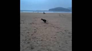 Txika playa2