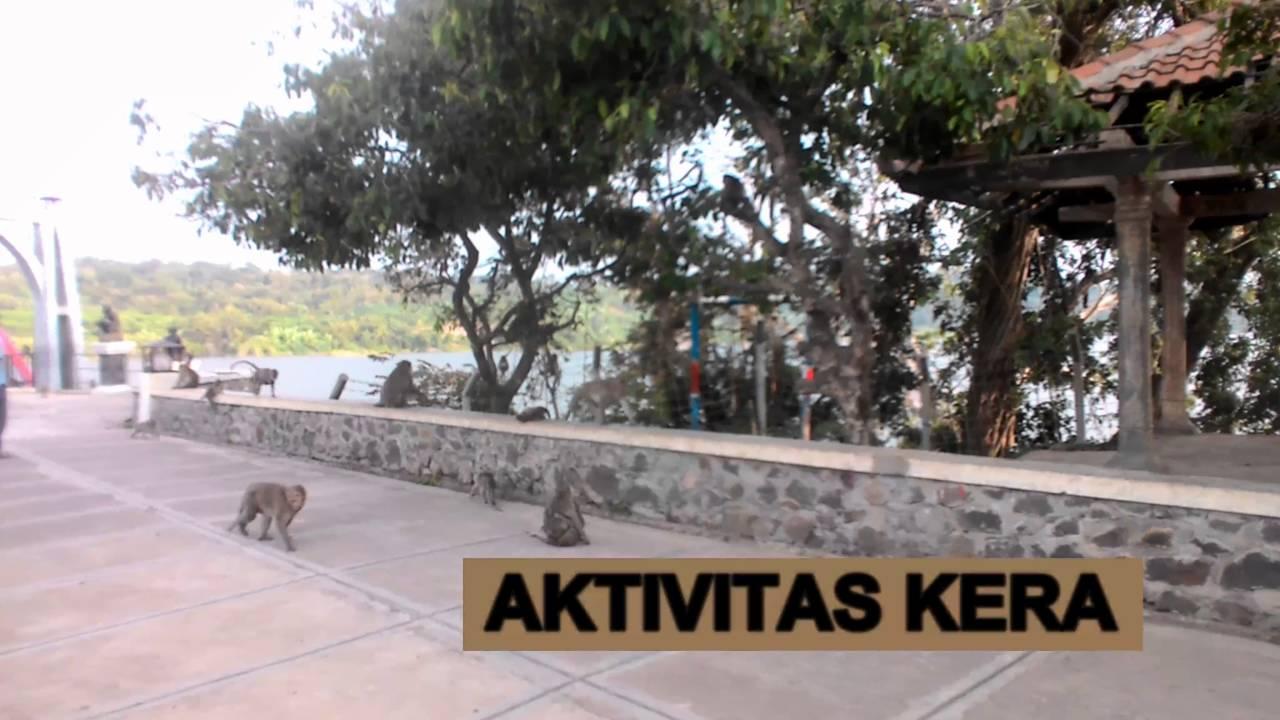 Wisata Semarang Jawa Tengah Gua Kreo Youtube