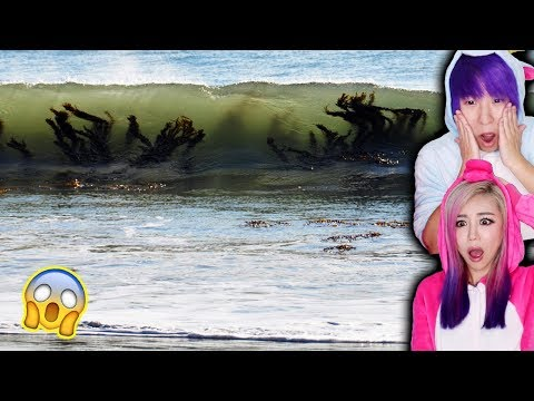The Most Dangerous Beaches In The World! *STAY AWAY*