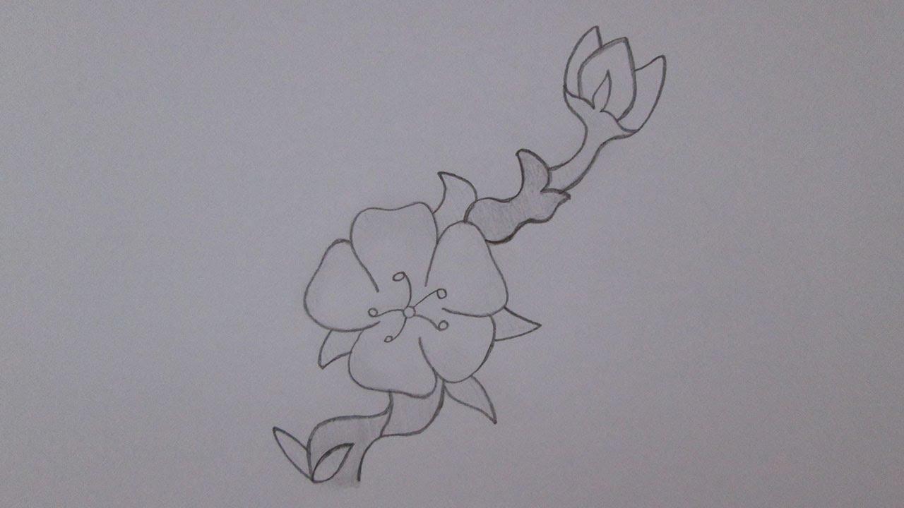 Como Dibujar Una Flor De Cerezo Youtube