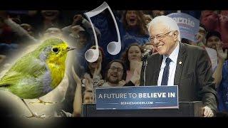 Bernie Sanders bird scene (with emotional music)