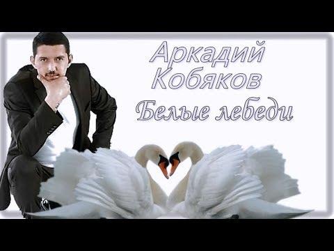 Аркадий Кобяков Белые лебеди