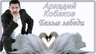 Download Аркадий Кобяков Белые лебеди Mp3 and Videos