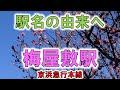 【由来紀行036】梅屋敷は晩冬が見ごろ!【東京都】 の動画、YouTube動画。