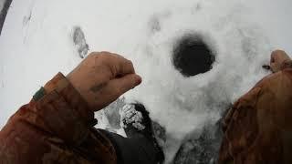 01 февраля 2020 года Первое испытание шуруповёрта МакитаDDF 481 Айсберг 130 Правый руль Ну и немн