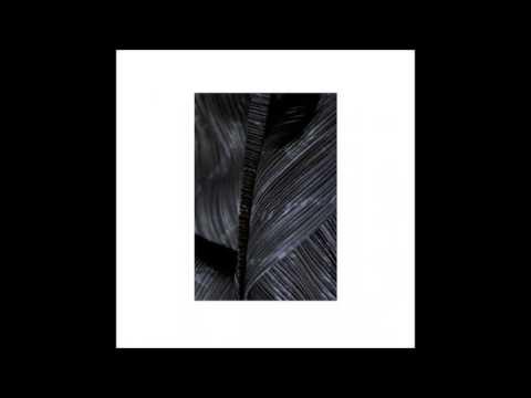 Roman Flügel - How To Spread Lies - Dial054